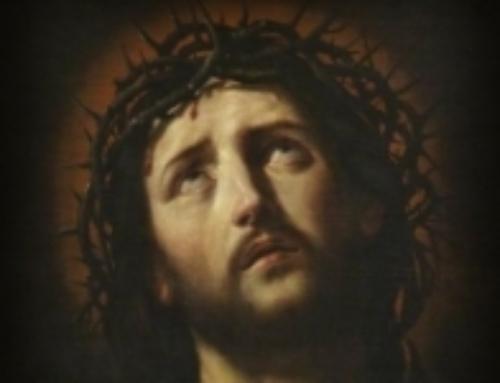 Escritos de la Madre Trinidad para profundizar en el misterio de la Semana Santa.